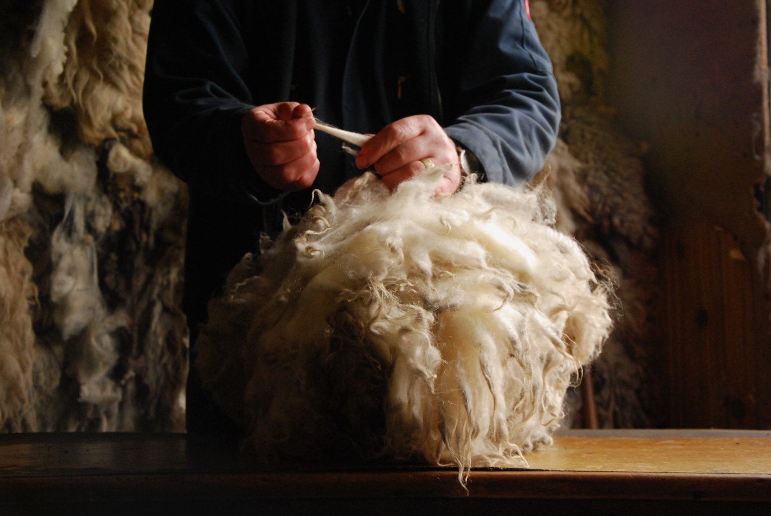 "The hand of Oliver Henry - ""the wool man"" at Shetland Wool Brokers"
