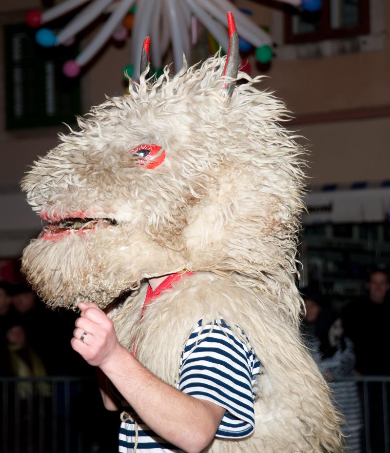 rijecki_karneval_140210_halubajski_zvoncari_14_roberta_f