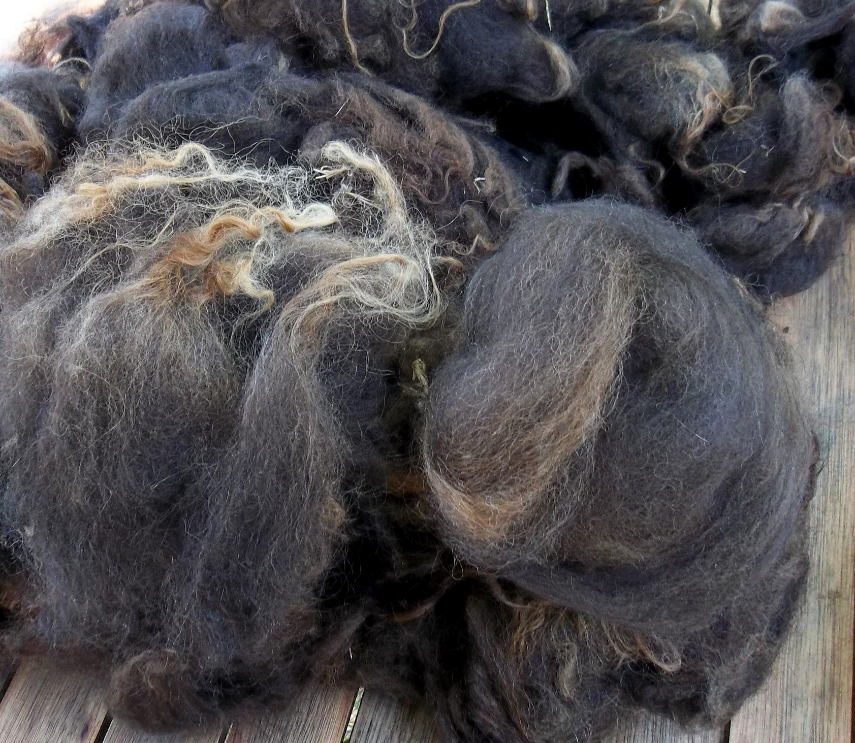 A small fleece full of possibilities. Photo: © D. Falck and used with kind permission
