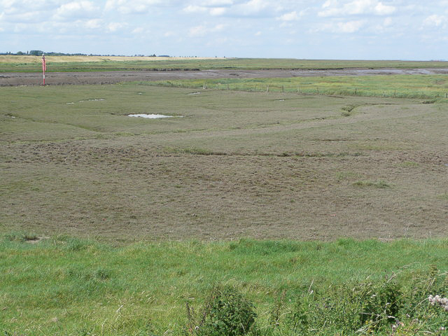 Grazed and ungrazed saltmarsh photographed 25 July 2009 by Hector Davie and shared on Wikimedia Commons using Creative Commons Attribution 2.0 Generic license here